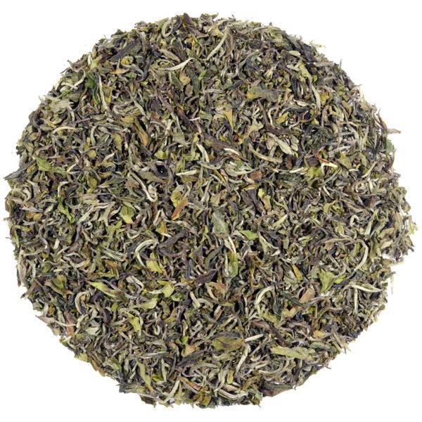 Darjeeling 2019 1st Flush Rohini Tea Estate 'Spring Wonder' black tea